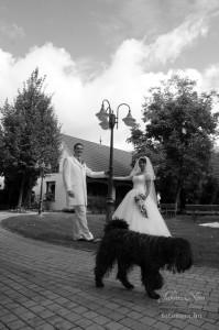 esküvő011